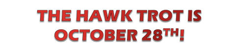 hawk trot 2